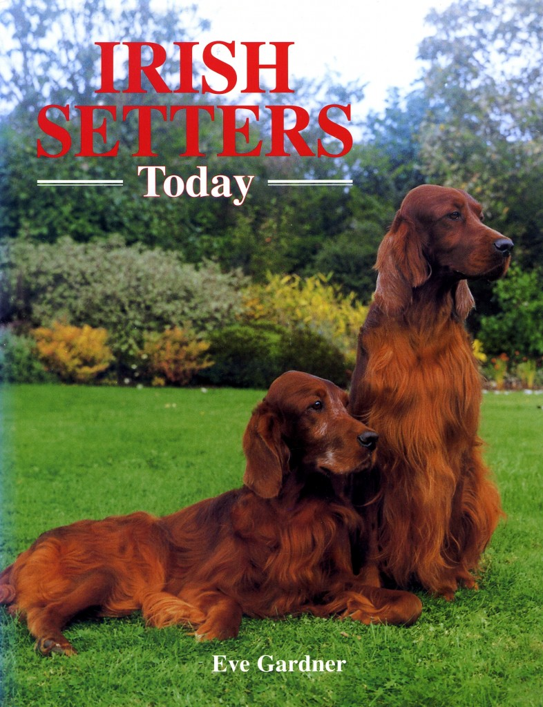 Front cover of book: Irish Setters Today by Eve Gardner