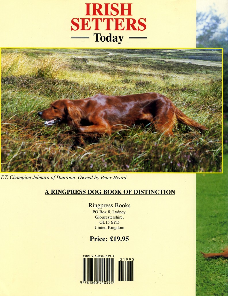 Back cover of Irish Setters Today by Eve Gardner
